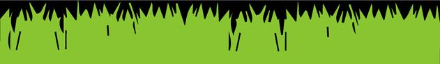 grasspng2