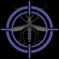 purple target on mosquito